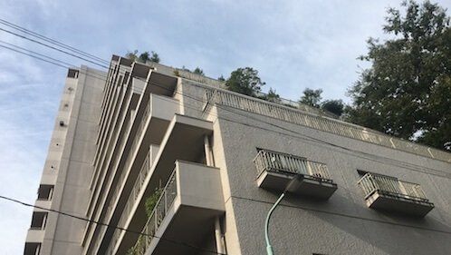 東京都文京区 大塚 文京ハイツ 入居前清掃・カーペットクリーニング