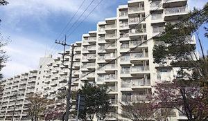 佐倉市 ハッコー佐倉 外観