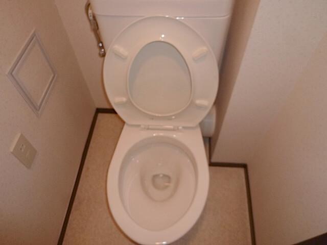 千葉県 佐倉市 ザ・ウィンベル臼井王子台 入居前清掃 トイレ洗浄後の様子